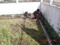 Pengukuran lahan